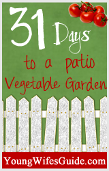 31 Days Patio Vegetable Garden Series