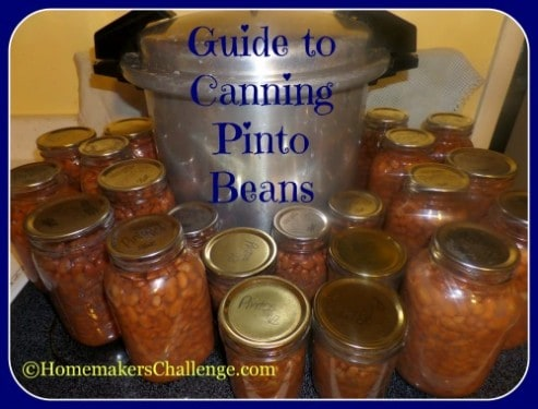 Guide to Canning Pinto Beans ~ Successful Homemakers
