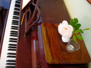 Home as an Instrument, Chores as Scales: Practice Makes Good Music