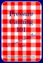 Pressure Canning 101 – Pinto Beans