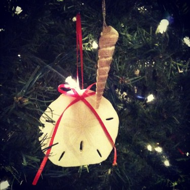 christmas sand dollar  craft at Homemakers Challenge