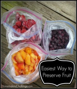 Easiest Way to Preserve Fruits