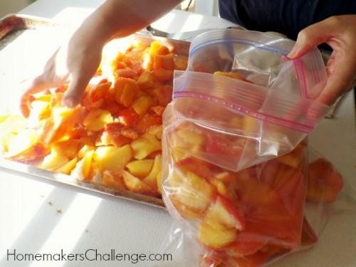Easiest Way to Preserve Fruits from Homemaker's Challenge @homechallenge