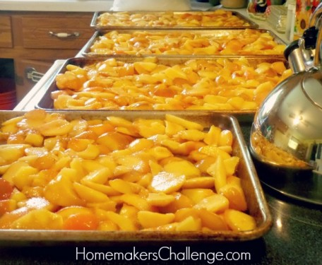 Easiest Way to Preserve Fruits from Homemaker's Challenge @homechallenge