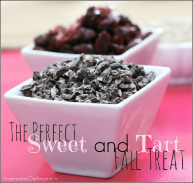 The Perfect Sweet and Tart Fall Treat from Homemaker's Challenge