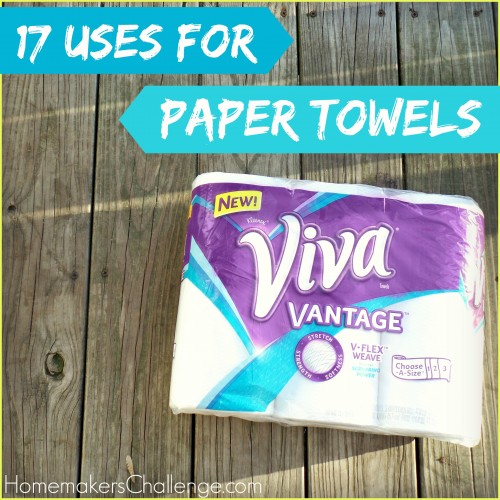 17 Uses for Paper Towels from Homemaker's Challenge