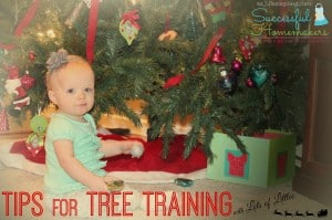 Tips for Tree Training with Lots of Littles on Successful Homemakers