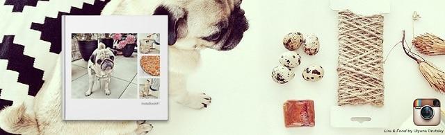 Blurb books ~ Successful Homemakers