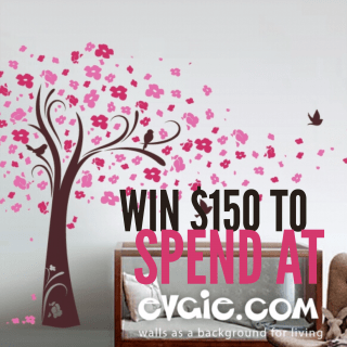 Win $150 to spend at Evgie.com ~ Successful Homemakers