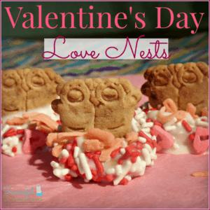 Valentine's Day Love Nests