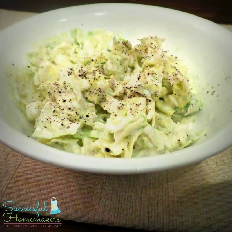 Low carb coleslaw ~ Successful Homemakers