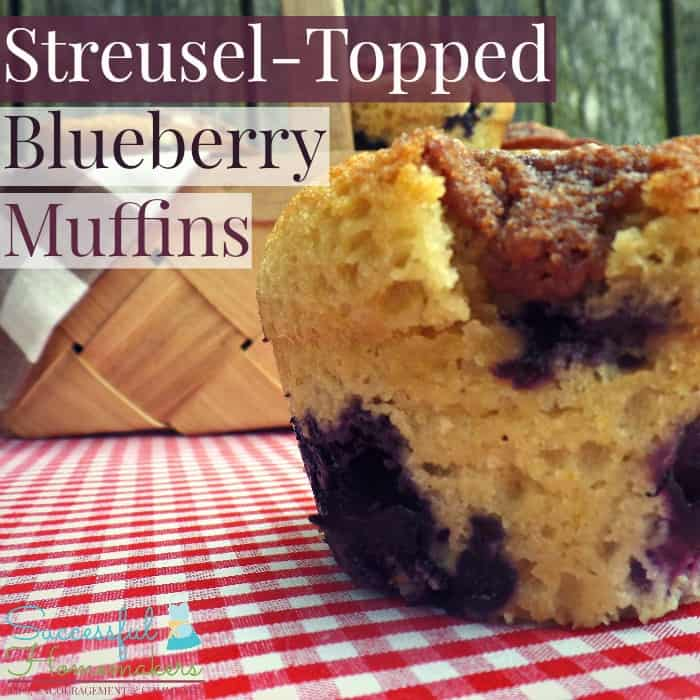 Streusel-Topped Blueberry Muffins ~ Successful Homemakers