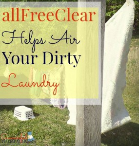 allFreeClear helps air your dirty laundry! ~ Successful Homemakers