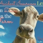 An Accident Insurance Lesson from Down on the Farm ~ Successful Homemakers