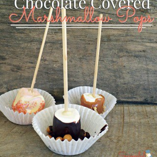 Chocolate covered marshmallow pops! ~ Successful Homemakers