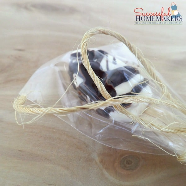 Chocolate Spoons ~ Successful Homemakers