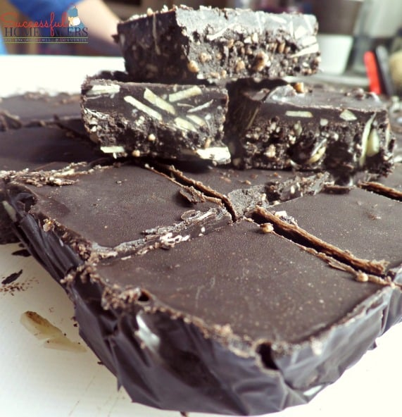 Skinny Chocolate Fudge- THM friendly ~ Successful Homemakers