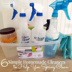6 Simple Homemade Cleaners to Help You Spring Clean