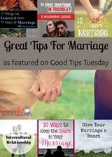 Good Tips Tuesday #132 ~ Successful Homemakers