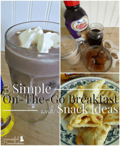 3 Simple On-The-Go Breakfast and Snack Ideas