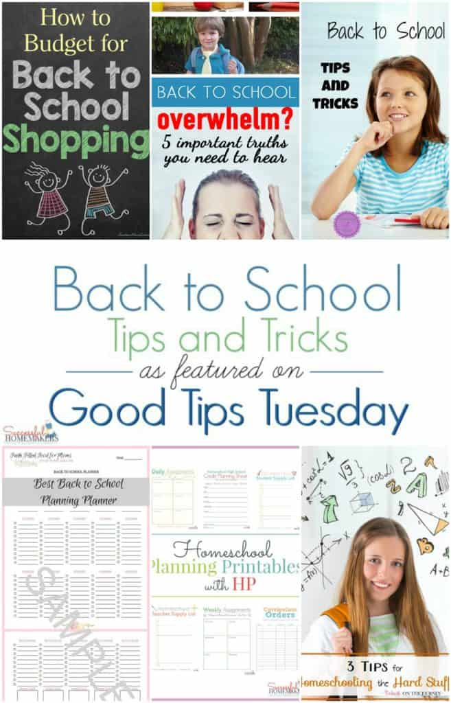 Good Tips Tuesday #137 ~ Successful Homemakers