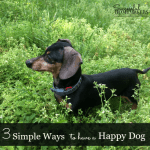 3 Simple Ways to have a Happy Dog! Download these free pet printables to stay on track!