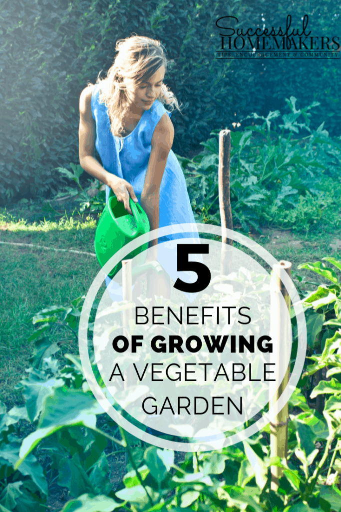5 Benefits of Growing a Vegetable Garden