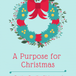 A Purpose For Christmas- beyond the parties and hustle and bustle