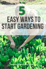 5 Easy Ways to Get Started With Gardening